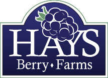 Hays Berry Farms logo